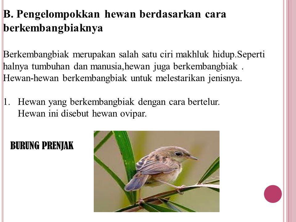 B. Pengelompokkan hewan berdasarkan cara berkembangbiaknya Berkembangbiak merupakan salah satu ciri makhluk hidup.Seperti halnya tumbuhan dan manusia,