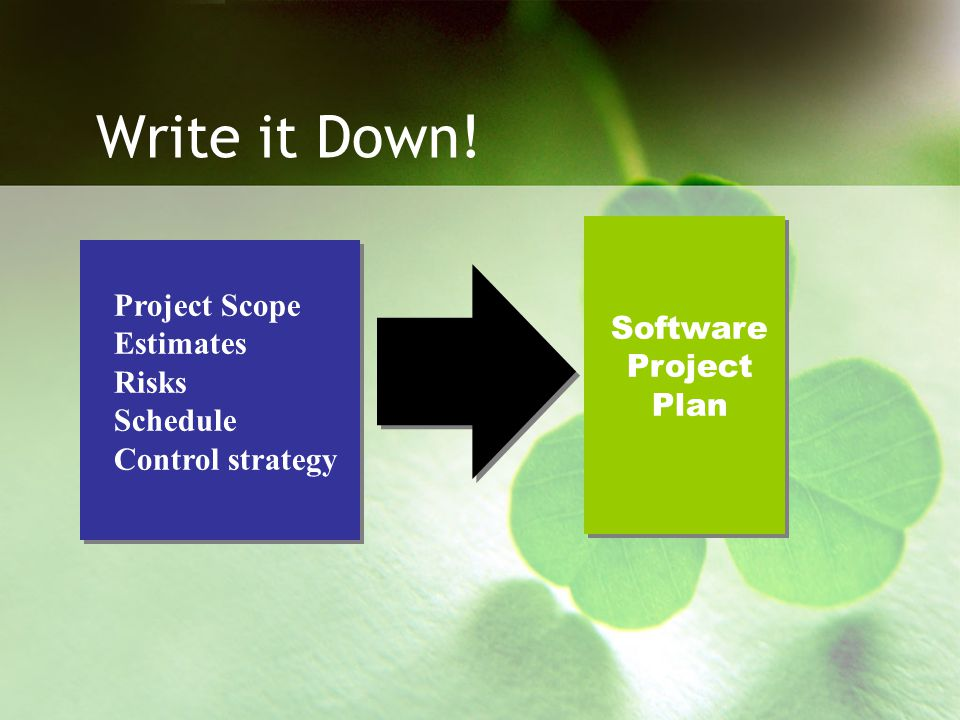 Write it Down! Software Project Plan Project Scope Estimates Risks Schedule Control strategy