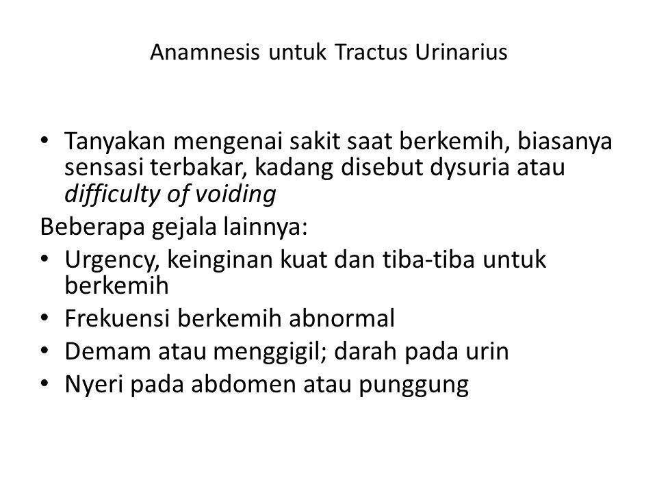 Anamnesis untuk Tractus Urinarius Tanyakan mengenai sakit saat berkemih, biasanya sensasi terbakar, kadang disebut dysuria atau difficulty of voiding