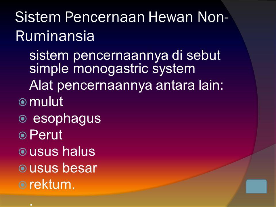 Sistem Pencernaan Hewan Ruminansia  Gigi seri (Insisivus)  Geraham belakang (Molare)  Rahang  lambung memiliki empat ruangan, yaitu: Rumen (fermentor), Retikulum, Omasum dan Abomasum.