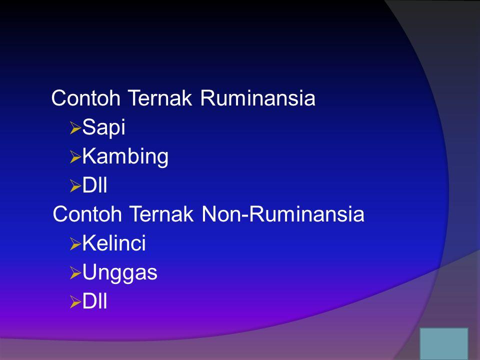Sistem Pencernaan Hewan Non- Ruminansia sistem pencernaannya di sebut simple monogastric system Alat pencernaannya antara lain:  mulut  esophagus  Perut  usus halus  usus besar  rektum..