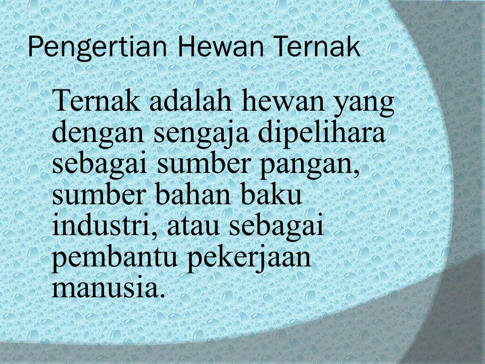Pengertian Hewan Ternak Ternak adalah hewan yang dengan sengaja dipelihara sebagai sumber pangan, sumber bahan baku industri, atau sebagai pembantu pekerjaan manusia.