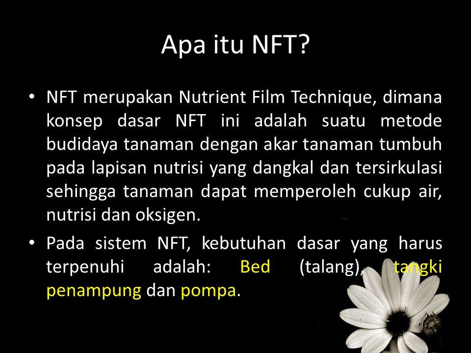 Apa itu NFT? NFT merupakan Nutrient Film Technique, dimana konsep dasar NFT ini adalah suatu metode budidaya tanaman dengan akar tanaman tumbuh pada l