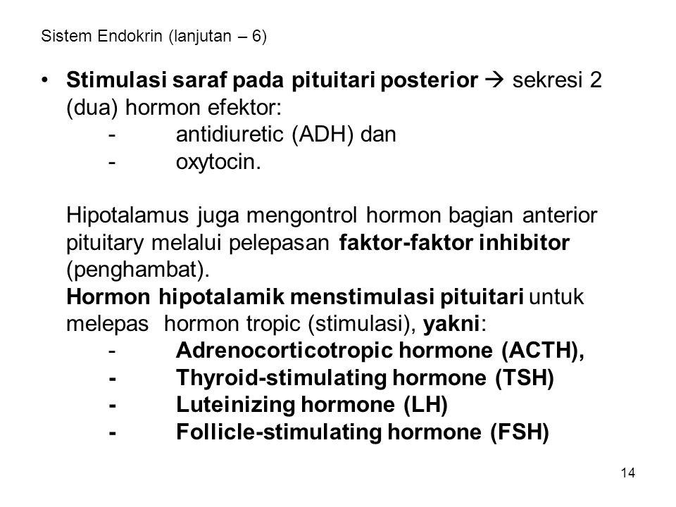 14 Sistem Endokrin (lanjutan – 6) Stimulasi saraf pada pituitari posterior  sekresi 2 (dua) hormon efektor: -antidiuretic (ADH) dan -oxytocin. Hipota