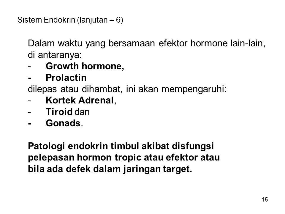 15 Sistem Endokrin (lanjutan – 6) Dalam waktu yang bersamaan efektor hormone lain-lain, di antaranya: -Growth hormone, -Prolactin dilepas atau dihamba