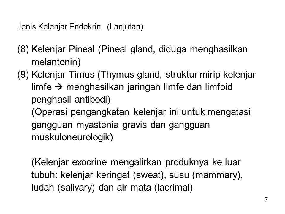 7 Jenis Kelenjar Endokrin (Lanjutan) (8)Kelenjar Pineal (Pineal gland, diduga menghasilkan melantonin) (9)Kelenjar Timus (Thymus gland, struktur mirip