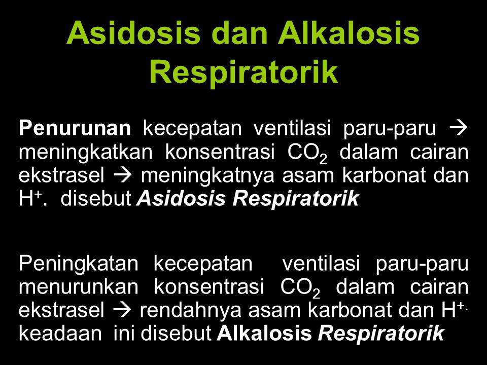 Asidosis dan Alkalosis Respiratorik Penurunan kecepatan ventilasi paru-paru  meningkatkan konsentrasi CO 2 dalam cairan ekstrasel  meningkatnya asam