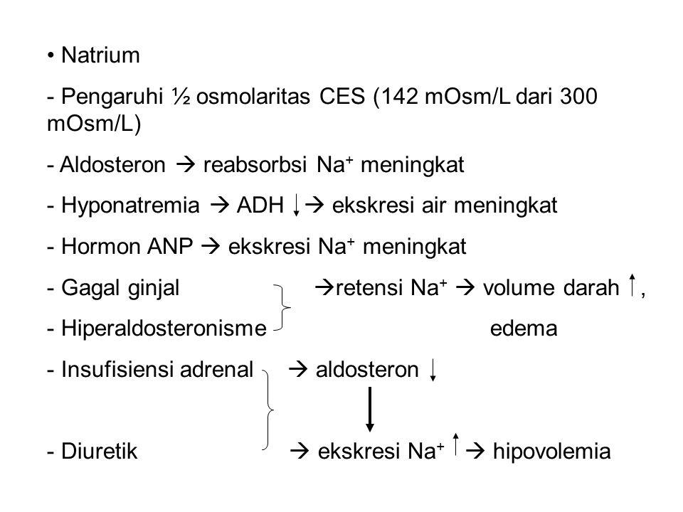 Natrium - Pengaruhi ½ osmolaritas CES (142 mOsm/L dari 300 mOsm/L) - Aldosteron  reabsorbsi Na + meningkat - Hyponatremia  ADH  ekskresi air meningkat - Hormon ANP  ekskresi Na + meningkat - Gagal ginjal  retensi Na +  volume darah, - Hiperaldosteronisme edema - Insufisiensi adrenal  aldosteron - Diuretik  ekskresi Na +  hipovolemia