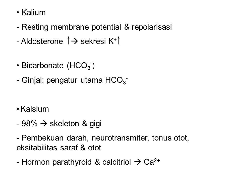 Kalium - Resting membrane potential & repolarisasi - Aldosterone  sekresi K + Bicarbonate (HCO 3 - ) - Ginjal: pengatur utama HCO 3 - Kalsium - 98%  skeleton & gigi - Pembekuan darah, neurotransmiter, tonus otot, eksitabilitas saraf & otot - Hormon parathyroid & calcitriol  Ca 2+
