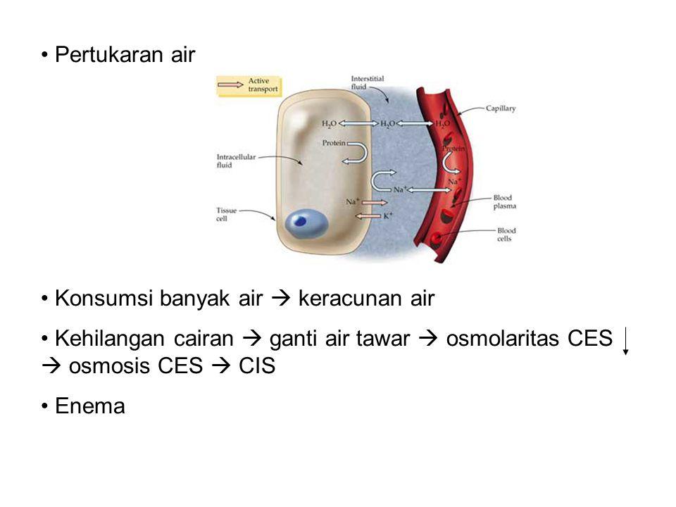 Konsentrasi Elektrolit & Anion Protein di Plasma, Cairan Interstisial, dan Cairan Intrasel mEq/L 175 150 125 100 75 50 25 0 Na + K + Ca +2 Mg +2 Cl - HCO 3 - HPO 4 2- SO 4 2- Anion Protein Plasma Cairan interstisial Cairan intra sel 142 145 10 4 140 5 3 0.2 2 2 35 100 117 3 24 27 15 2 2 100 1 1 20 20 2 50