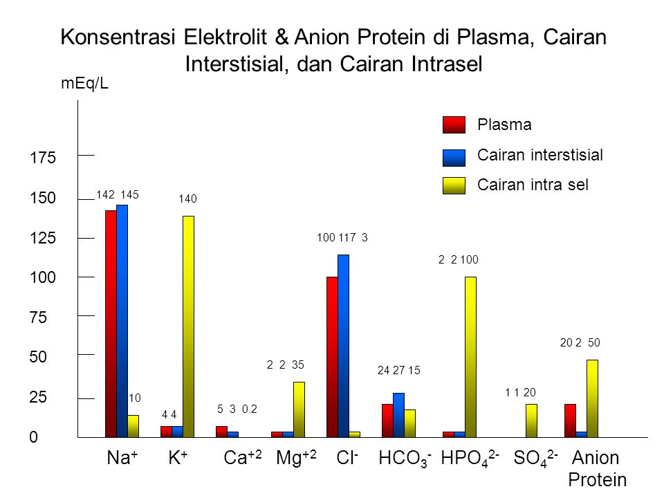Fungsi ion dari elektrolit: 1.Kontrol osmosis air 2.Keseimbangan asam – basa 3.Aliran listrik  potensial aksi (pada neuron) 4.Kofaktor enzim Cairan interstisial >< plasma  protein  tekanan koloid osmotik plasma Cairan ekstra sel: Na + & Cl - Cairan intra sel: K +, protein, HPO 4 2-