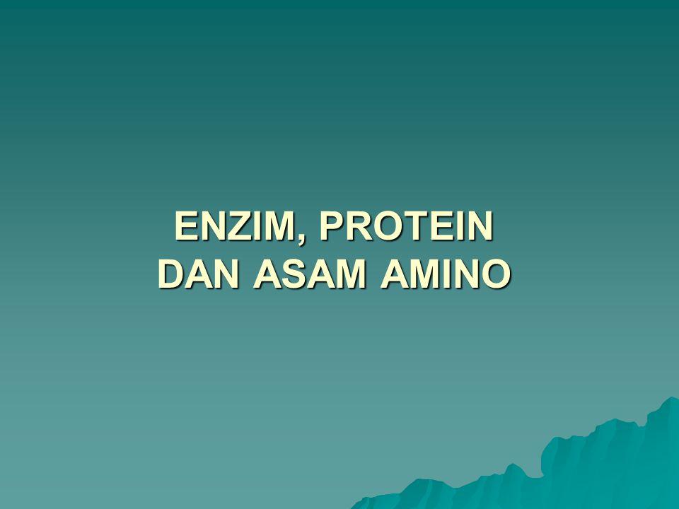 URUTAN ASAM AMINO Banyaknya cara asam amino dapat disusun dalam protein sangatlah mencengangkan Dengan 20 jenis asam amino yang berbeda, jumlah susunan yang mungkin terjadi adalah sekitar 20 100 atau 10 130 Susunan nukleotida dalam gen yang merupakan sandi bagi protein menentukan urutan asam aminonya dan juga menentukan fungsinya