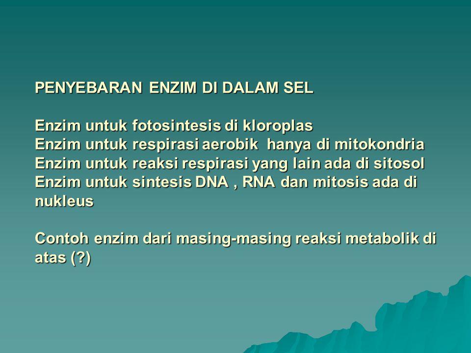 SIFAT DAN STRUKTUR ENZIM Kekhasan dan Tatanama Salah satu sifat penting enzim adalah kekhasannya (spesifitas) Kekhasan ini disebabkan oleh perpaduan enzim-substrat dan suatu pengaturan gembok dan kunci Nama tiap enzim disesuaikan dengan nama substratnya dengan penambahan ase di belakangnya Contoh : sukrase urease Kelompok enzim yang mempunyai fungsi yang sama diberi nama menurut fungsinya Contoh : hidrolase