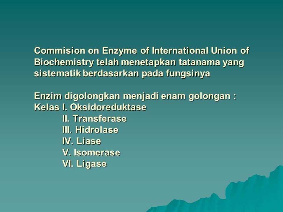 Commision on Enzyme of International Union of Biochemistry telah menetapkan tatanama yang sistematik berdasarkan pada fungsinya Enzim digolongkan menj