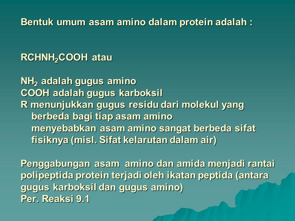 Bentuk umum asam amino dalam protein adalah : RCHNH 2 COOH atau NH 2 adalah gugus amino COOH adalah gugus karboksil R menunjukkan gugus residu dari mo
