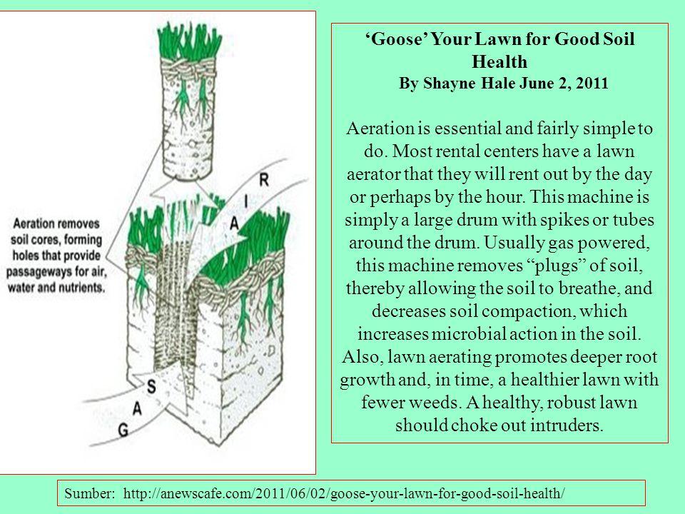 AERASI TANAH : Kemampuan tanah untuk melakukan pertukaran gas dengan atmosfer. Proses aerasi tanah ini melibatkan laju ventilasi, Komposisi udara tana