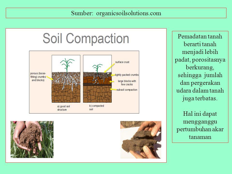 Lawn Aeration for a Greener, Thicker, Healthier Lawn! Umber: http://yardplug.com/FAQ/FAQ1.htm More Benefits of Lawn Aeration Aeration loosens compacte