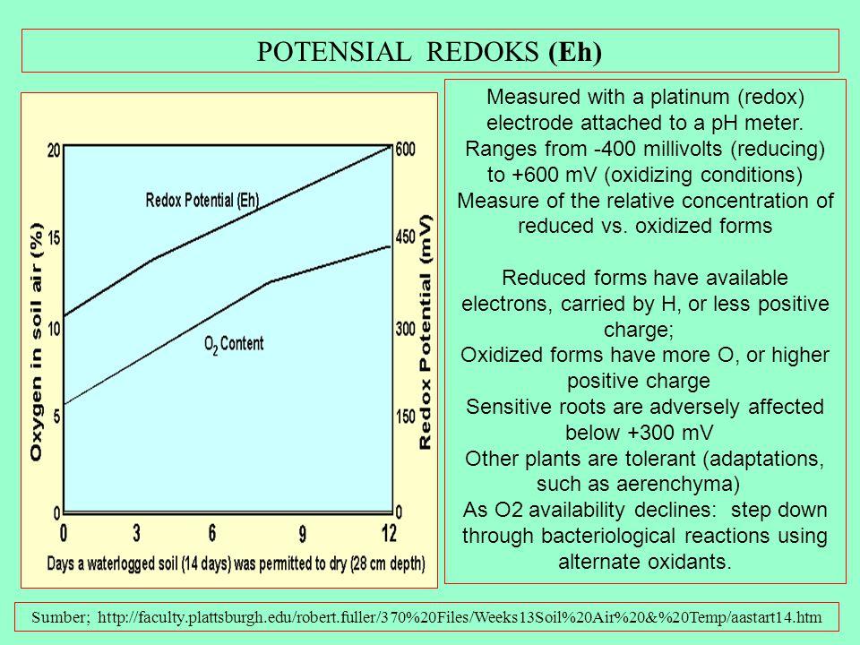 Faktor-faktor yang mempengaruhi Aerasi Sumber; http://faculty.plattsburgh.edu/robert.fuller/370%20Files/Weeks13Soil%20Air%20&%20Temp/aastart14.htm 1.E