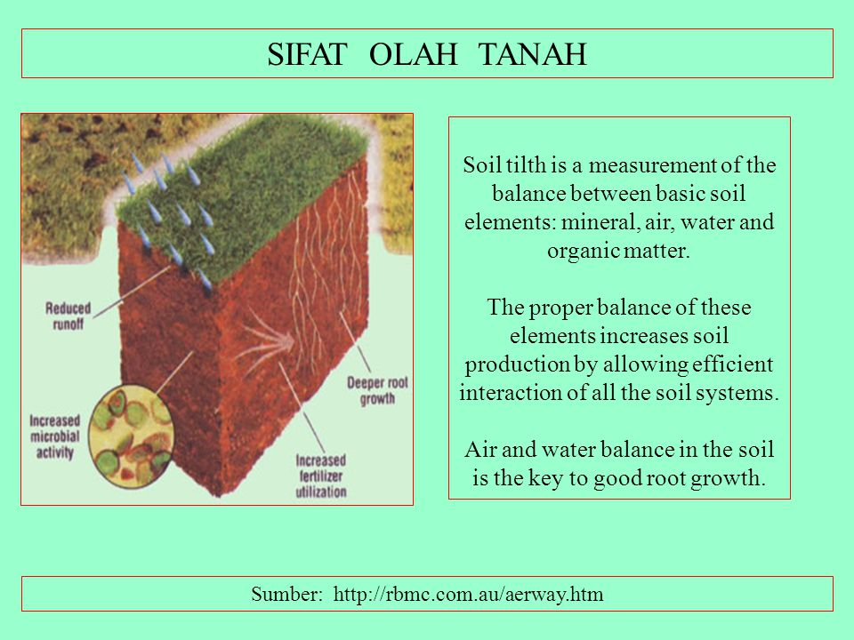KOMPONEN UTAMA TANAH ADALAH: Air, Udara, Air, Udara, Rocks, Minerals, Nutrients, Organic Matter, Well- decomposed organic matter – Humus, Organisms Th