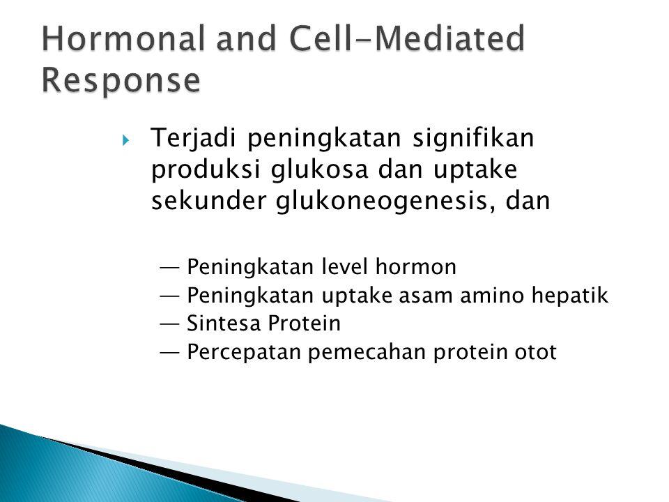  Terjadi peningkatan signifikan produksi glukosa dan uptake sekunder glukoneogenesis, dan — Peningkatan level hormon — Peningkatan uptake asam amino