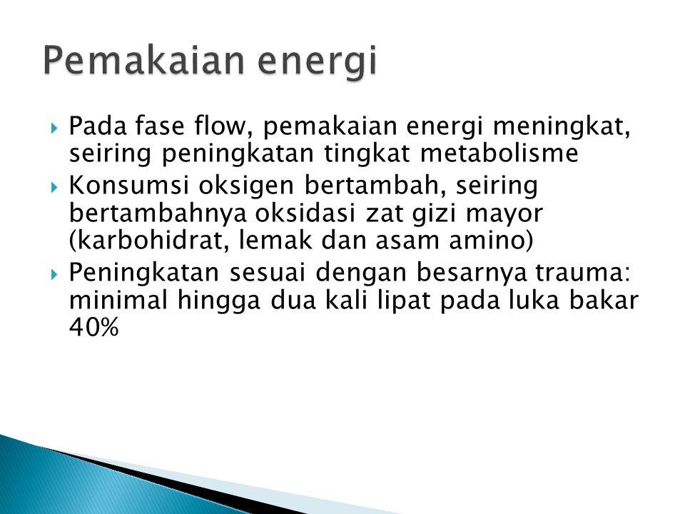  Pada fase flow, pemakaian energi meningkat, seiring peningkatan tingkat metabolisme  Konsumsi oksigen bertambah, seiring bertambahnya oksidasi zat