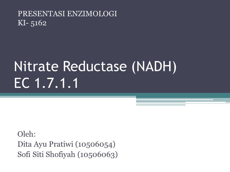 Nitrate Reductase (NADH) EC 1.7.1.1 Oleh: Dita Ayu Pratiwi (10506054) Sofi Siti Shofiyah (10506063) PRESENTASI ENZIMOLOGI KI- 5162