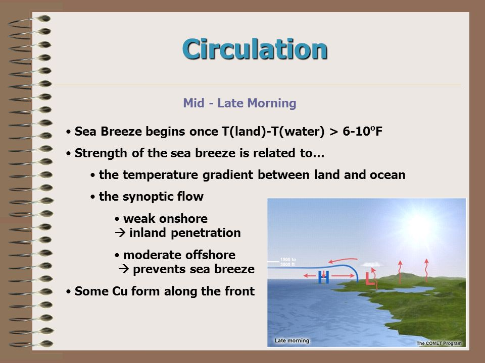 Circulation Mid - Late Morning Sea Breeze begins once T(land)-T(water) > 6-10 o F Strength of the sea breeze is related to… the temperature gradient b