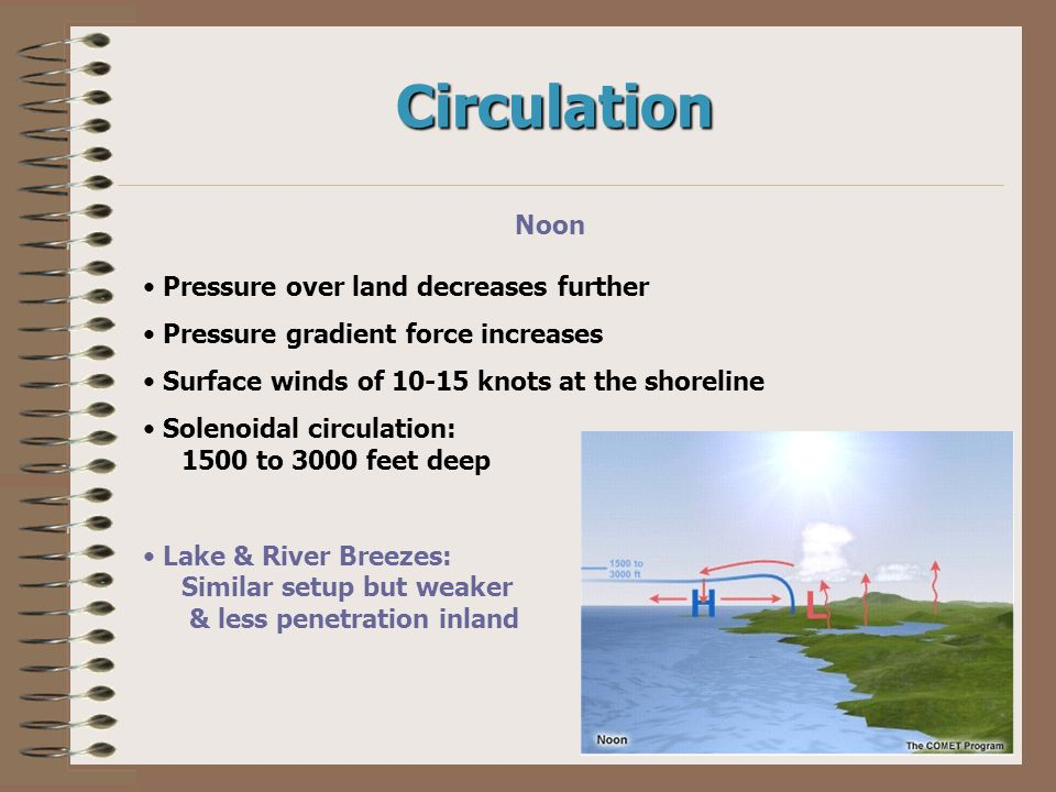 Circulation Noon Pressure over land decreases further Pressure gradient force increases Surface winds of 10-15 knots at the shoreline Solenoidal circu
