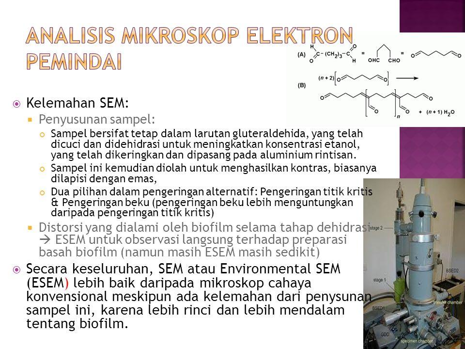  Kelemahan SEM:  Penyusunan sampel: Sampel bersifat tetap dalam larutan gluteraldehida, yang telah dicuci dan didehidrasi untuk meningkatkan konsent