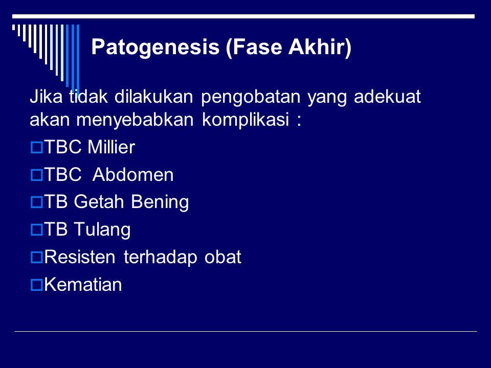Patogenesis (Fase Akhir) Jika tidak dilakukan pengobatan yang adekuat akan menyebabkan komplikasi :  TBC Millier  TBC Abdomen  TB Getah Bening  TB