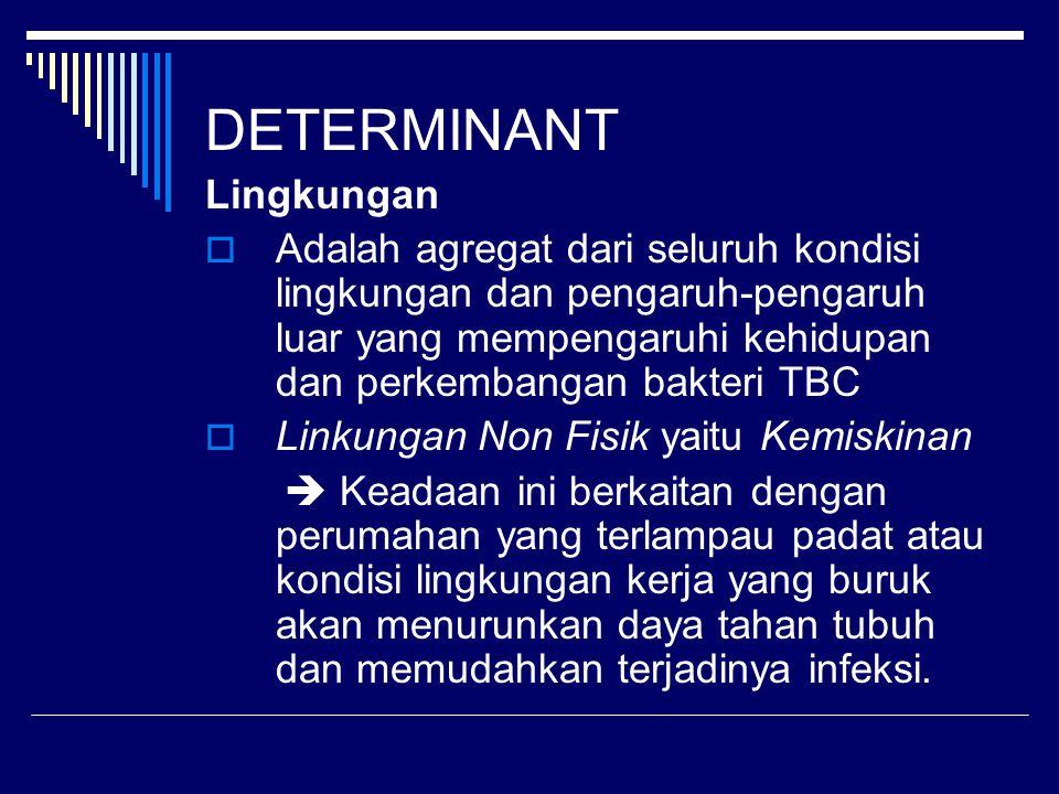 Target Nasional P2TBC  Target 2004 yaitu : - CDR minimal 60% - Angka konversi ≥ 85% - Angka kesembuhan ≥ 80% - Angka error rate ≤ 5%