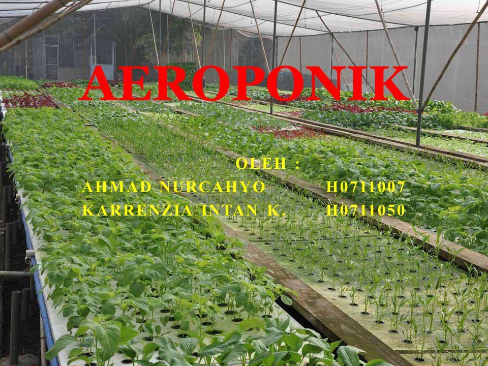 OLEH : AHMAD NURCAHYOH0711007 KARRENZIA INTAN K.H0711050 AEROPONIK