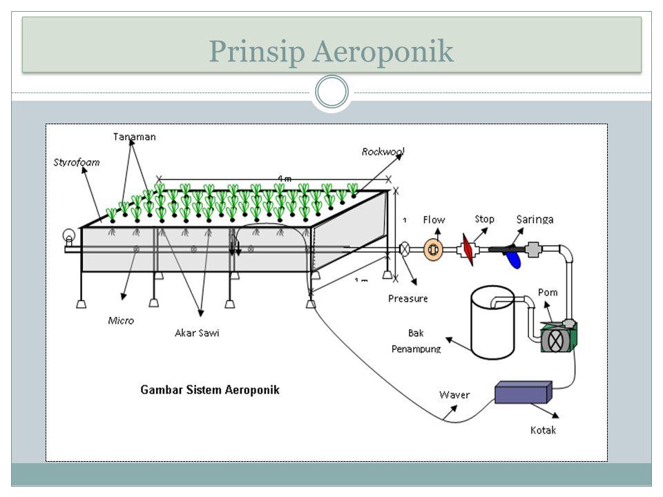 Prinsip Aeroponik