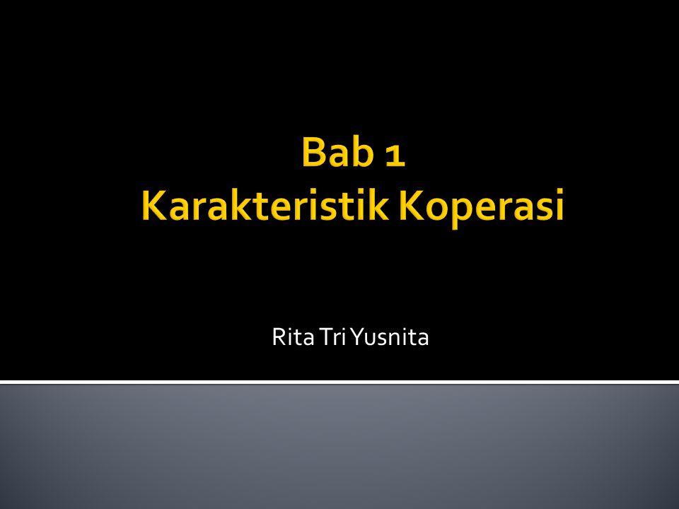 Rita Tri Yusnita