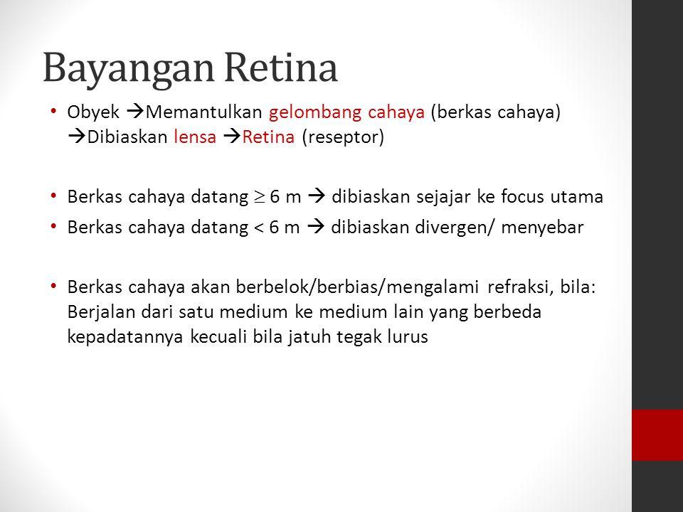 Retina Mengandung: Reseptor penglihatan SEL RODS (BATANG) mempunyai fotopigmen : rhodopsin SEL CONES (KERUCUT) mempunyai fotopigmen : - erythrolabe; p