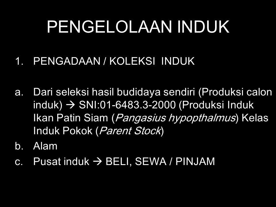 PENGELOLAAN INDUK 1.PENGADAAN / KOLEKSI INDUK a.Dari seleksi hasil budidaya sendiri (Produksi calon induk)  SNI:01-6483.3-2000 (Produksi Induk Ikan P