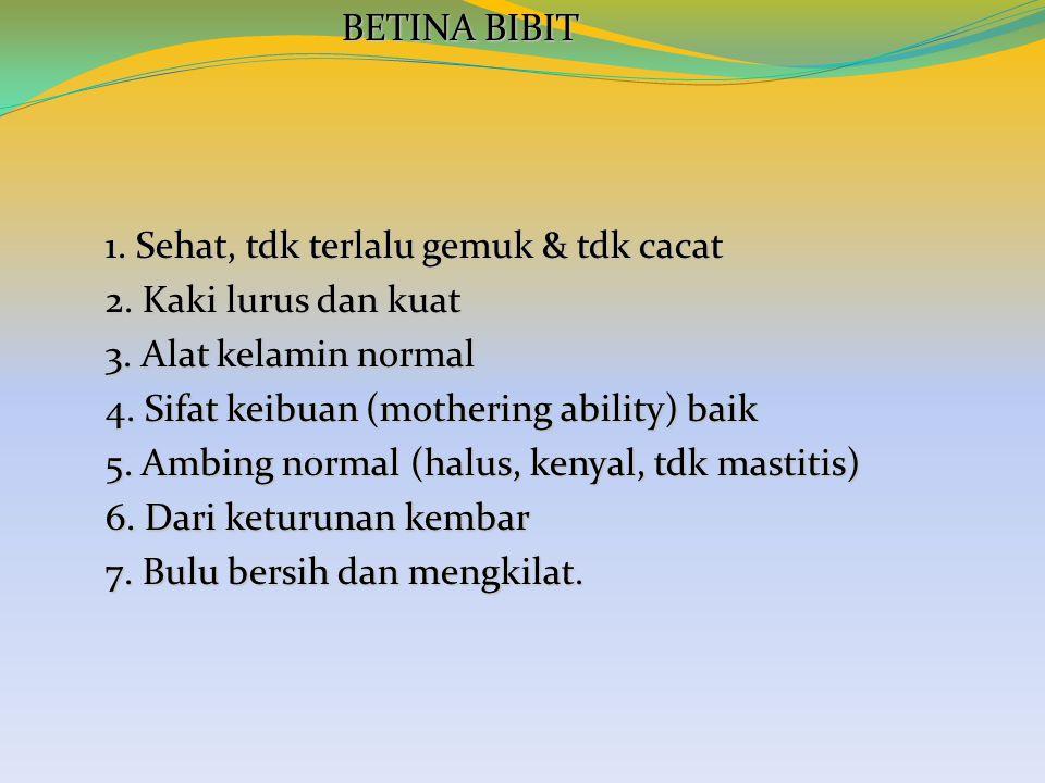 BETINA BIBIT BETINA BIBIT 1. Sehat, tdk terlalu gemuk & tdk cacat 2. Kaki lurus dan kuat 3. Alat kelamin normal 4. Sifat keibuan (mothering ability) b