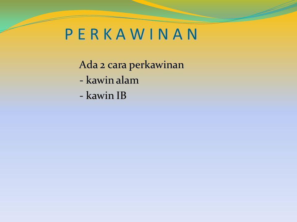 P E R K A W I N A N Ada 2 cara perkawinan Ada 2 cara perkawinan - kawin alam - kawin alam - kawin IB - kawin IB