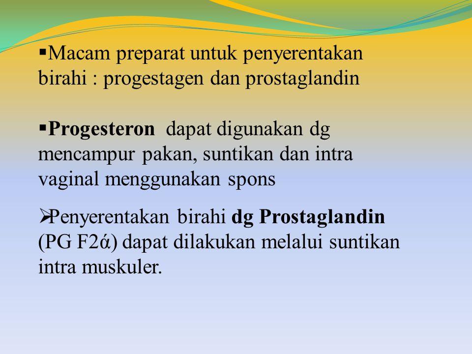  Macam preparat untuk penyerentakan birahi : progestagen dan prostaglandin  Progesteron dapat digunakan dg mencampur pakan, suntikan dan intra vagin