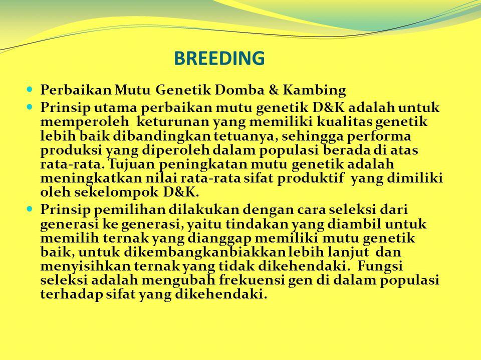 BREEDING Perbaikan Mutu Genetik Domba & Kambing Prinsip utama perbaikan mutu genetik D&K adalah untuk memperoleh keturunan yang memiliki kualitas genetik lebih baik dibandingkan tetuanya, sehingga performa produksi yang diperoleh dalam populasi berada di atas rata-rata.