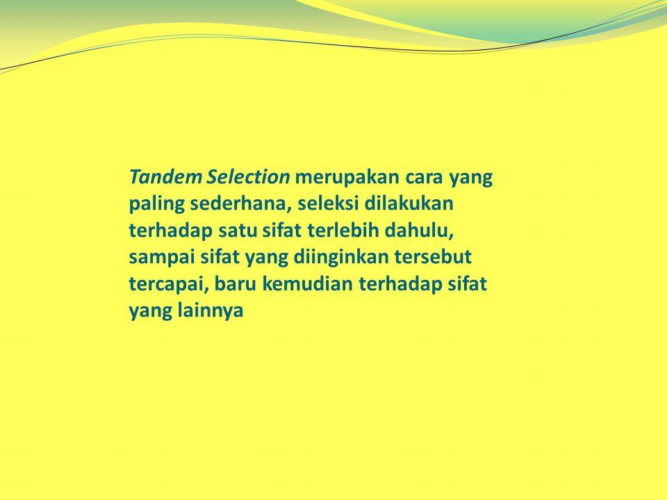 Tandem Selection merupakan cara yang paling sederhana, seleksi dilakukan terhadap satu sifat terlebih dahulu, sampai sifat yang diinginkan tersebut te