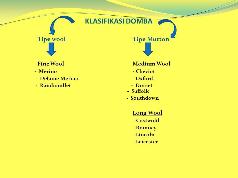 KLASIFIKASI DOMBA Tipe woolTipe Mutton Fine WoolMedium Wool - Merino- Cheviot - Delaine Merino - Oxford - Rambouillet - Dorset - Suffolk - Southdown L