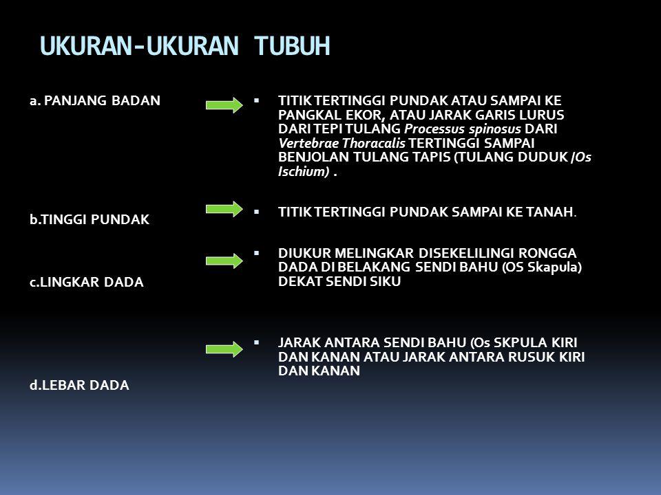 UKURAN-UKURAN TUBUH a.