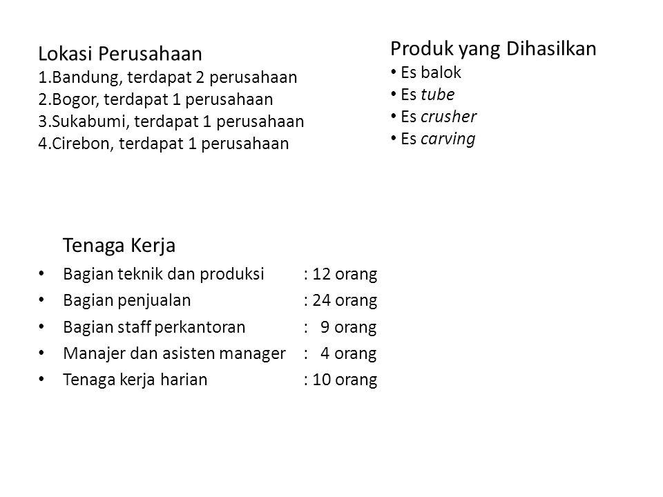 Tenaga Kerja Bagian teknik dan produksi: 12 orang Bagian penjualan: 24 orang Bagian staff perkantoran: 9 orang Manajer dan asisten manager: 4 orang Tenaga kerja harian: 10 orang Produk yang Dihasilkan Es balok Es tube Es crusher Es carving Lokasi Perusahaan 1.Bandung, terdapat 2 perusahaan 2.Bogor, terdapat 1 perusahaan 3.Sukabumi, terdapat 1 perusahaan 4.Cirebon, terdapat 1 perusahaan