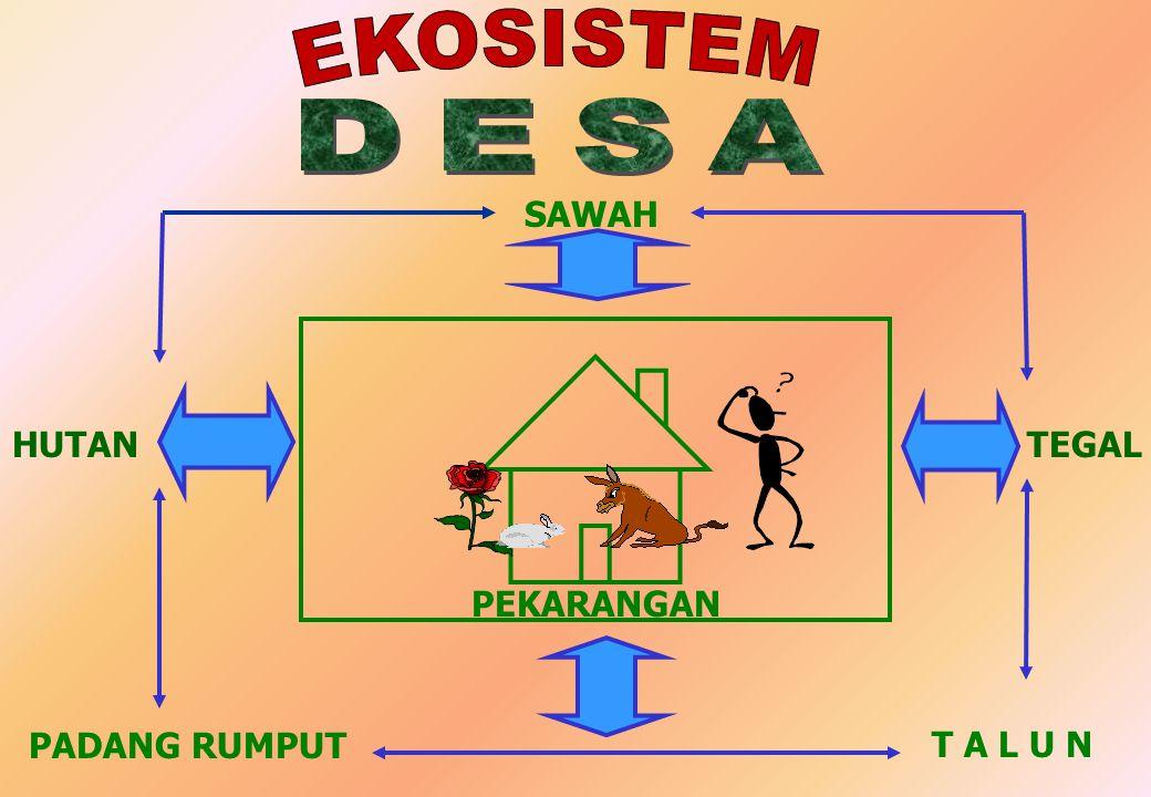 INTENSIFIKASI (MASUKAN ENERGI) MENJADIKAN AGROEKOSISTEM MERUPAKAN EKOSISTEM TERSUBSIDI (SUBSIDIZED ECOSYSTEM) DAMPAK LINGKUNGAN PENGOLAHAN TANAH EROSI TANAH DAN PEMBENTUKAN LAPISAN KEDAP AIR (MEKANISASI) REKAYASA GENETIKA EROSI GENETIK DAN KEMANDIRIAN PEMUPUKAN EROSI (TERUTAMA AKIBAT PUPUK P), YUTROFIKASI DI AKUATIK, DAN REAKSI TANAH (ASAM / BASA) IRIGASI SARANA & PRASARANA PERTISIDA PENCEMARAN DAN KESEIMBANGAN LINGKUNGAN PENGOLAHAN TANAH EROSI TANAH DAN PEMBENTUKAN LAPISAN KEDAP AIR (MEKANISASI) REKAYASA GENETIKA EROSI GENETIK DAN KEMANDIRIAN PEMUPUKAN EROSI (TERUTAMA AKIBAT PUPUK P), YUTROFIKASI DI AKUATIK, DAN REAKSI TANAH (ASAM / BASA) IRIGASI SARANA & PRASARANA PERTISIDA PENCEMARAN DAN KESEIMBANGAN LINGKUNGAN