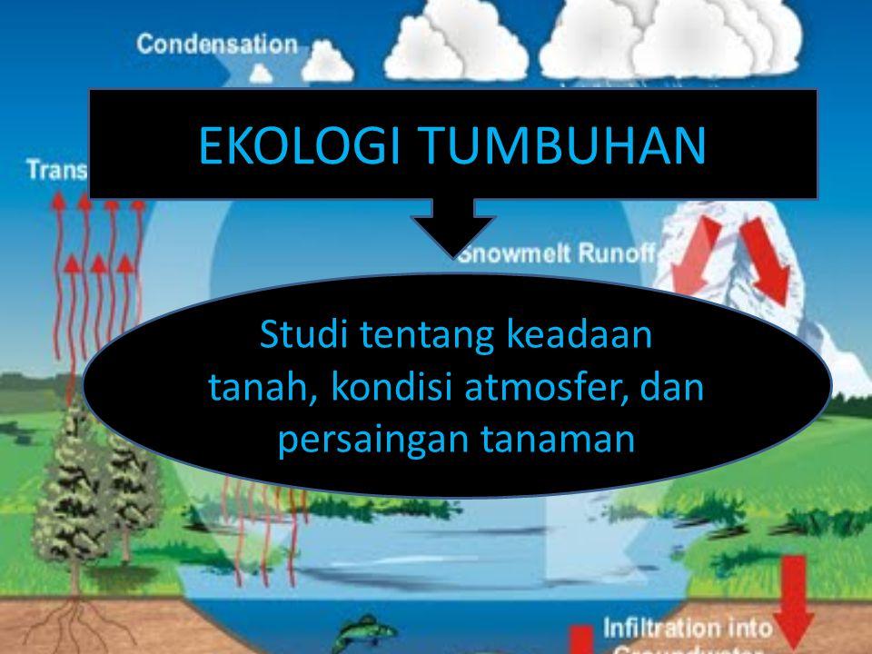 EKOLOGI TUMBUHAN Studi tentang keadaan tanah, kondisi atmosfer, dan persaingan tanaman