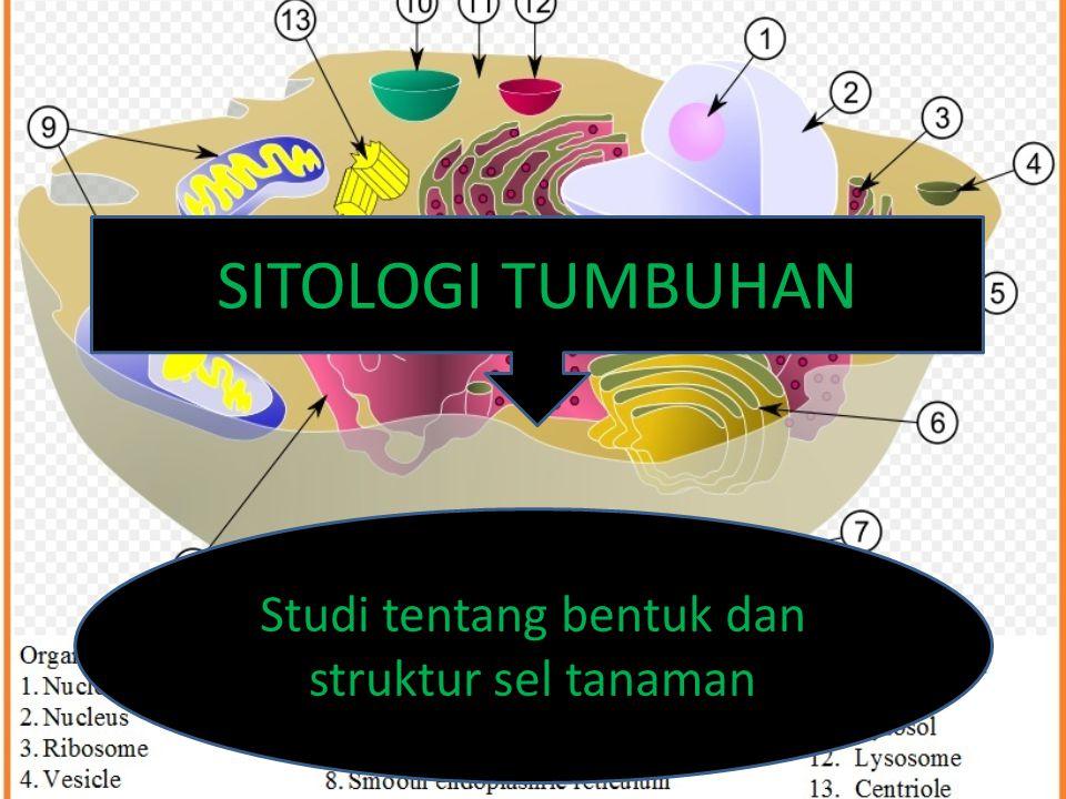 SITOLOGI TUMBUHAN Studi tentang bentuk dan struktur sel tanaman