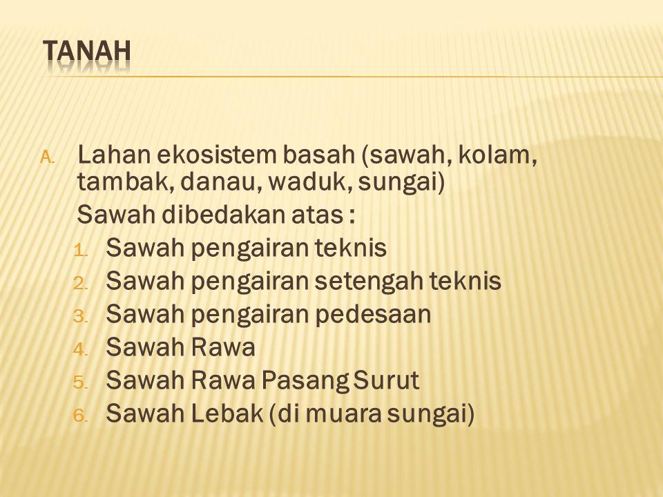 A.Lahan ekosistem basah (sawah, kolam, tambak, danau, waduk, sungai) Sawah dibedakan atas : 1.