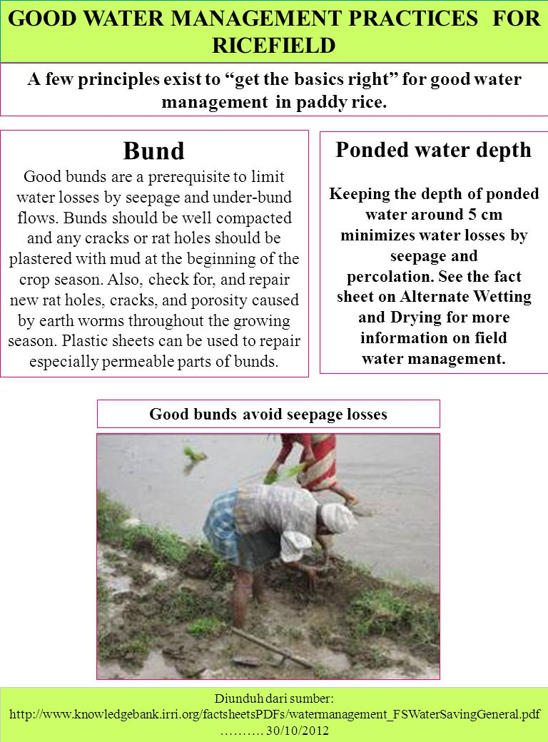 GOOD WATER MANAGEMENT PRACTICES FOR RICEFIELD Diunduh dari sumber: http://www.knowledgebank.irri.org/factsheetsPDFs/watermanagement_FSWaterSavingGener