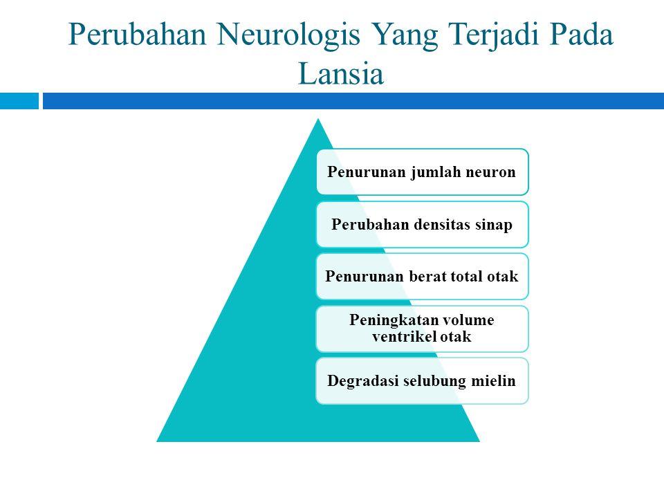 Perubahan Neurologis Yang Terjadi Pada Lansia Penurunan jumlah neuronPerubahan densitas sinapPenurunan berat total otak Peningkatan volume ventrikel o